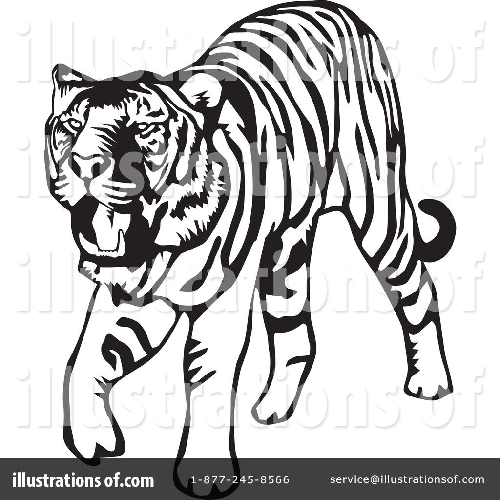 Tiger clipart illustration #10