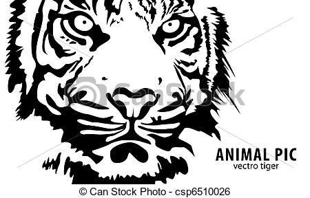 Tiger clipart illustration #11
