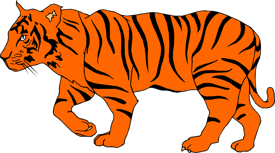 Tiger clipart illustration #2