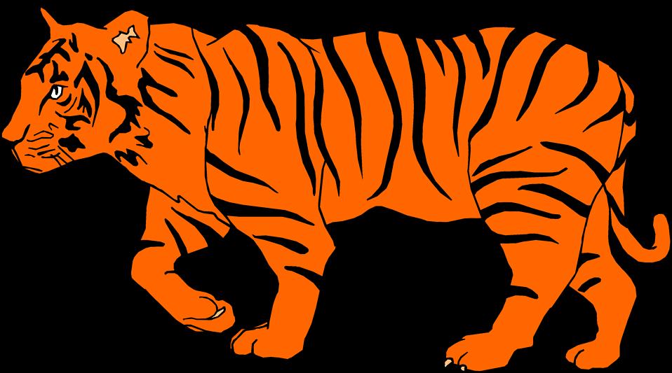 White Tiger clipart jungle animal Clipart golden  tiger