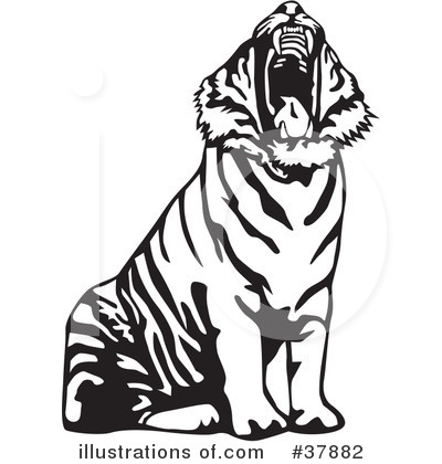 Tiger clipart illustration #7