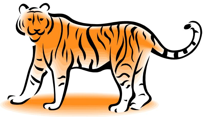 Tiiger clipart learned #13