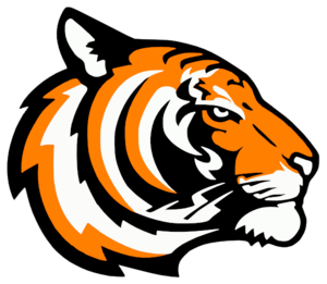 Tiger clipart orange #2