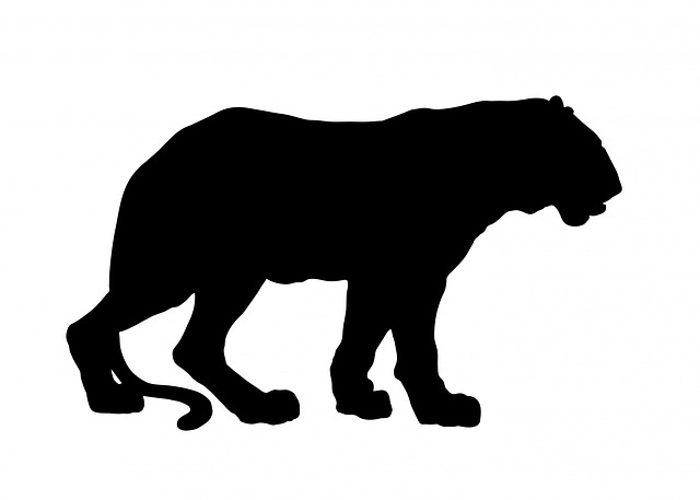 Tiger clipart shadow #6