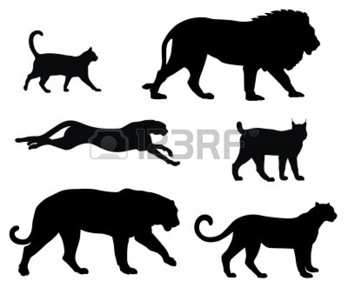 Tiger clipart shadow #7