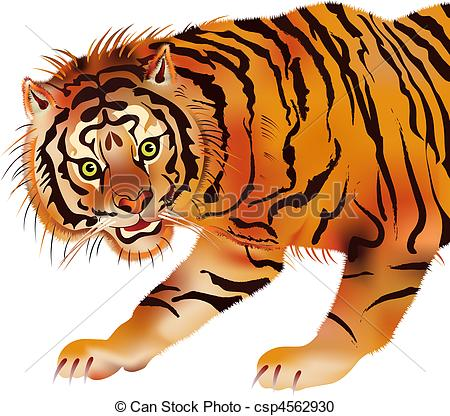 Tiger clipart siberian tiger #3