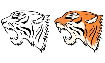 Drawn tigres profile Head line tiger Search from