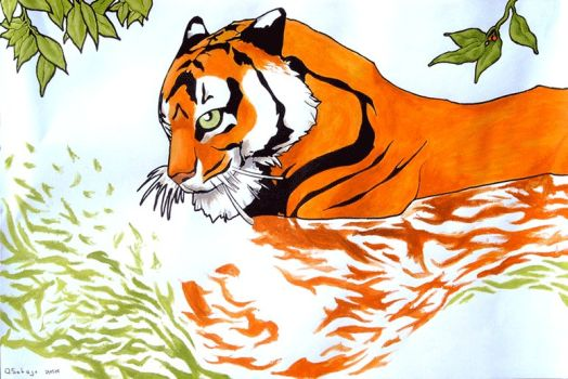 Tiger clipart swimming #14