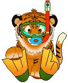 Tiger clipart swimming #12