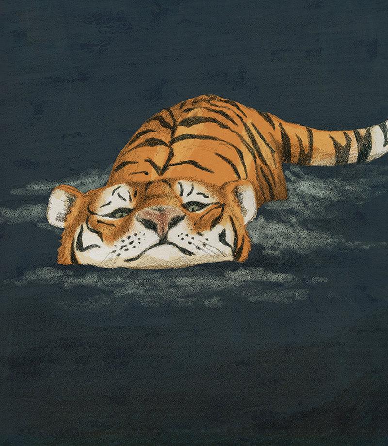 Tiger clipart swimming #2