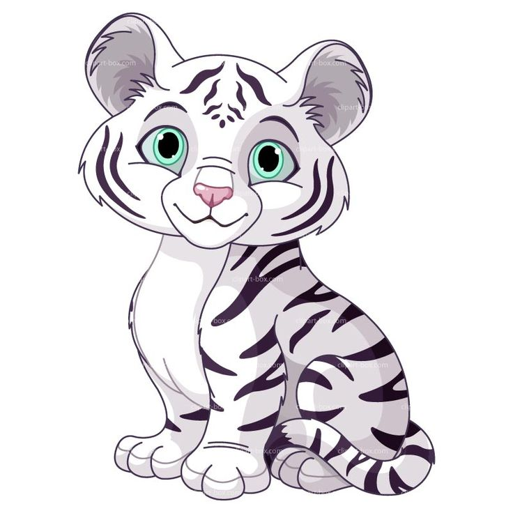 Amd clipart tiger Clipart Royalty CLIPART design animal