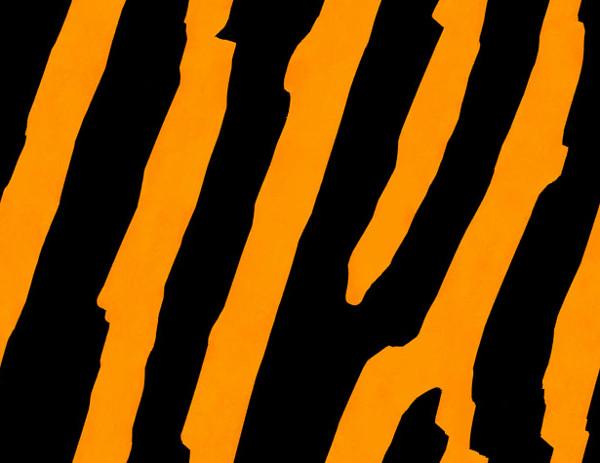 Tiger Print clipart orange #RG Print Clipart tiger background