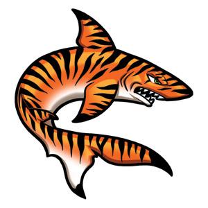 Tiger clipart swimming #1