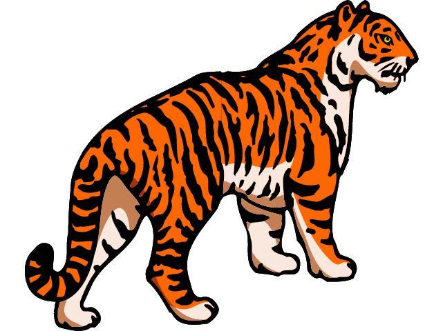 Tigres clipart R Tigre Animado Tigre Masteri