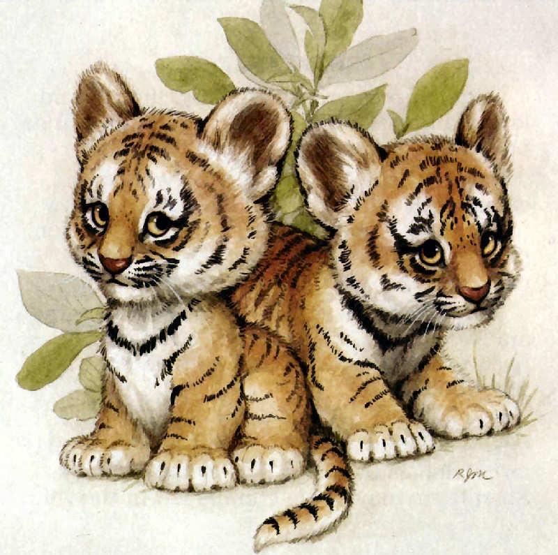 Tigres clipart baby cheetah #6