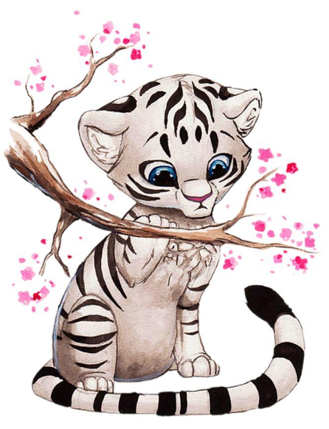 Tigres clipart drawn #8