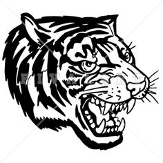 Tigres clipart side view #3