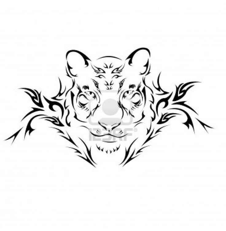 Tigres clipart side view #11