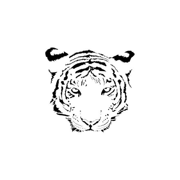 Tigres clipart swimming #9