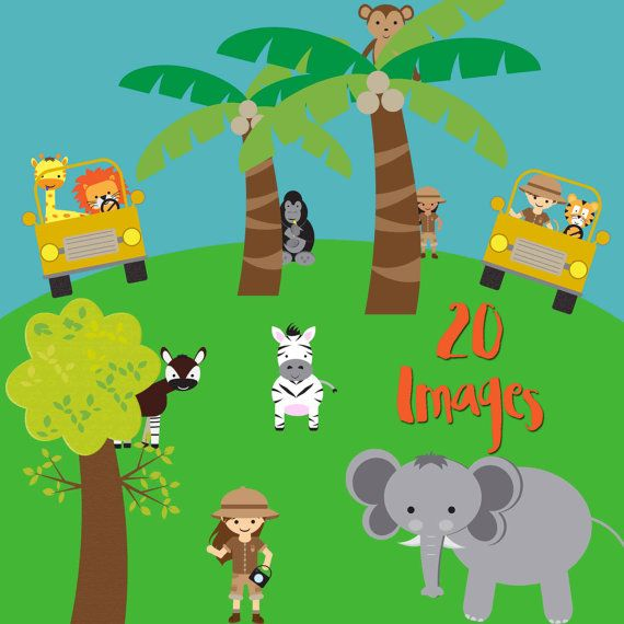 Tigres clipart zoo animal #7