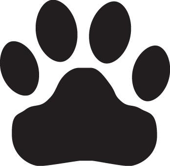 Wildcat clipart bear claw Bear Clip art bear Art