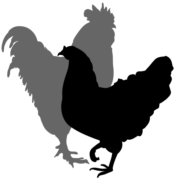 Titanic clipart silhouette Pets What Other Animals and