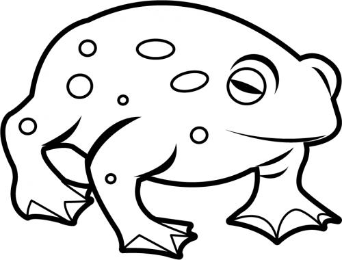 Amphibian clipart black and white Images Clip Black Art toad%20clip%20art%20black%20and%20white