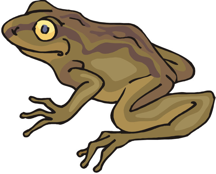 Toad clipart Clipart Toad The Cliparts Toad