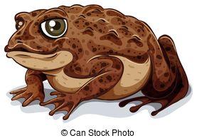 Toad clipart A Toad close Clipart 805