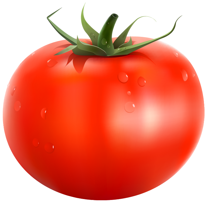 Vegetable clipart tomatoe Gallery Quality Clipart Tags: Picture