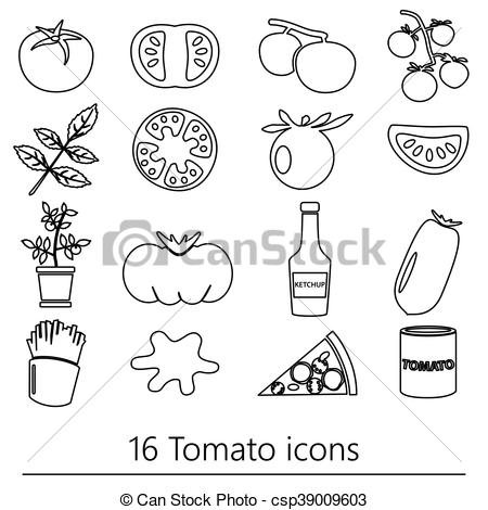 Tomato clipart outline Of Vector tomatoes set outline