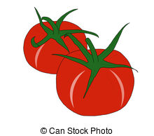 Tomato clipart two White tomatoes red Tomatoes Illustrations