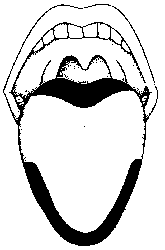 Tongue clipart sense taste #11