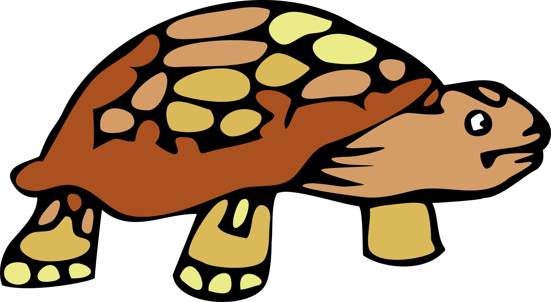 Turtoise clipart Free Stock Public Tortoise Cartoon