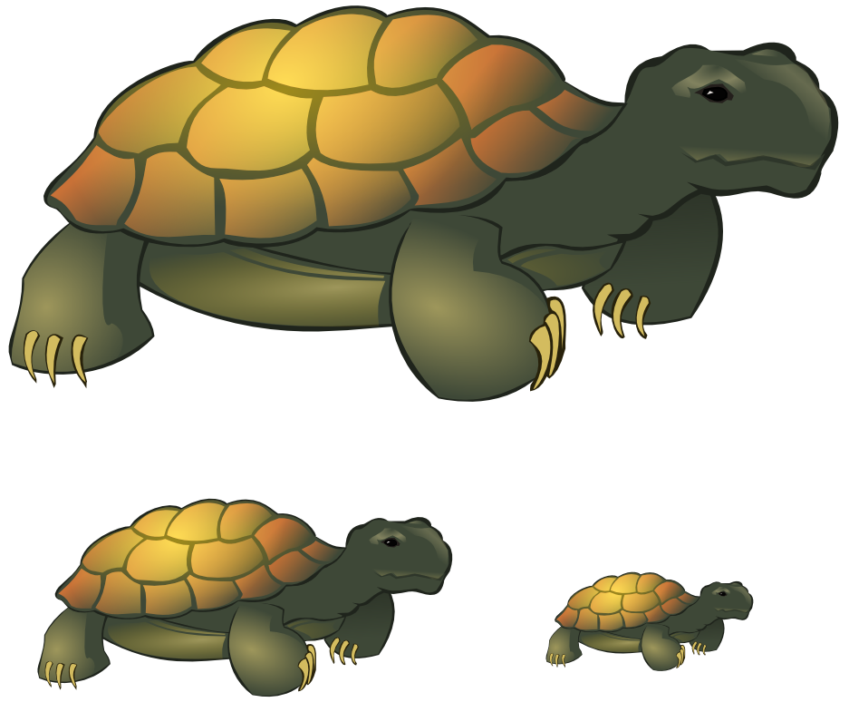 Tortoise clipart Clipart by on Tortoise by
