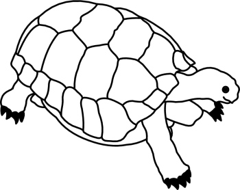 Tortoise clipart black and white #15