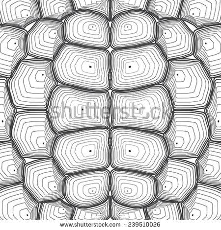 Tortoise clipart pattern #9