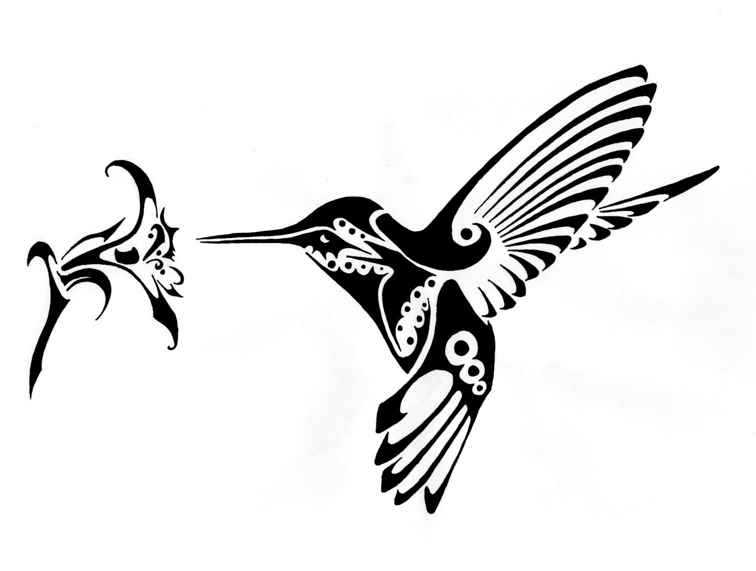 Drawn hummingbird phoenix Net/fs24/f/2007/356/6/3 http://fc02 http://fc02  Hummingbird