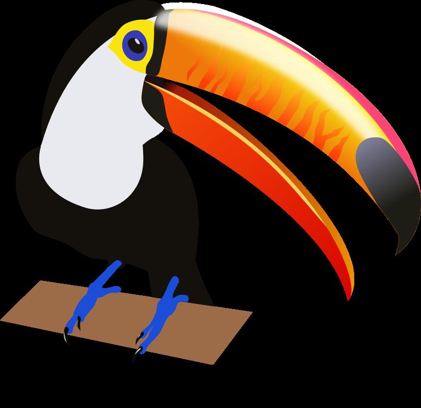 Toucan clipart Art Toucan Domain Public ·