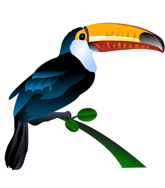 Toucan clipart Zoo Use aviary your on
