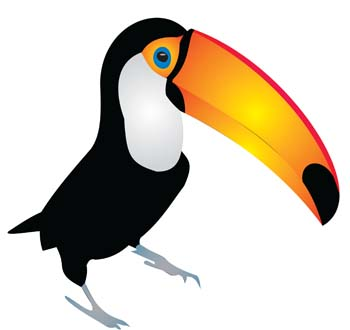 Hornbill clipart Com Best Toucan Cute #19609