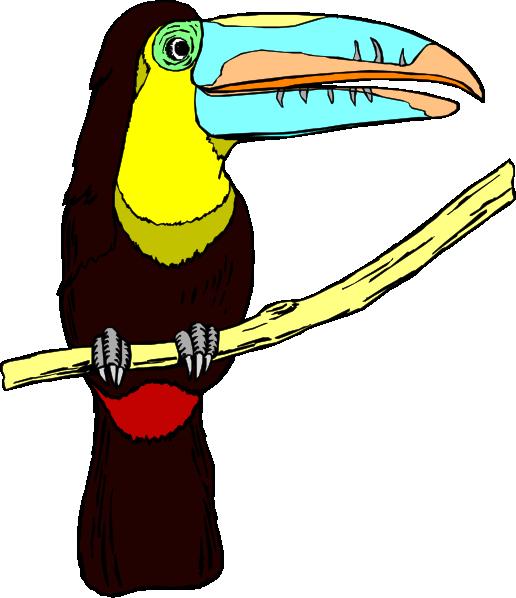 Beak clipart toucan Vector at this Download as: