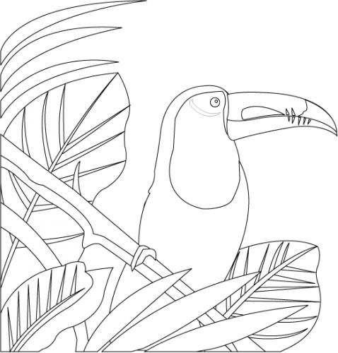 Toucan clipart black and white #12