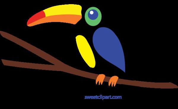 Toucan clipart hornbill #1