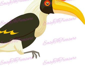 Toucan clipart hornbill #6