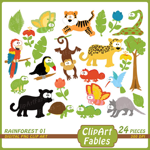Toucanet clipart rainforest monkey #5