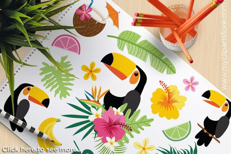 Toucan clipart tropical bird #8