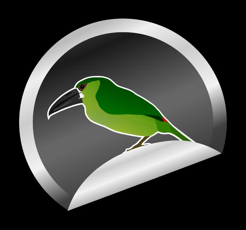 Toucanet clipart (PNG) MEDIUM sticker Clipart IMAGE