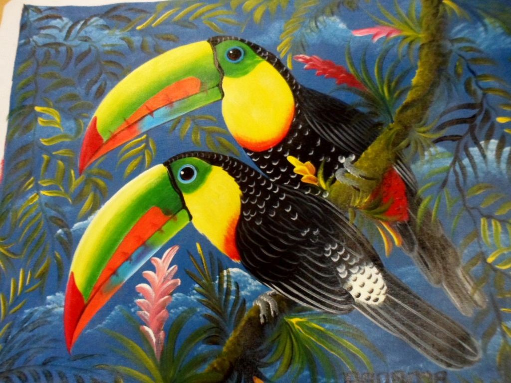 Toucanet clipart real animal #14