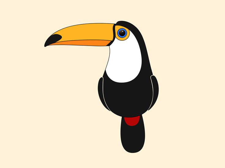 Toucanet clipart real animal #3